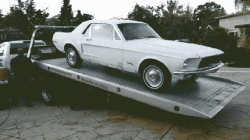 1968Mustang_new_home-1