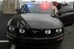Police Mustang_1